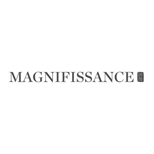 magnifissance